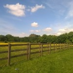 fence-1123569_960_720